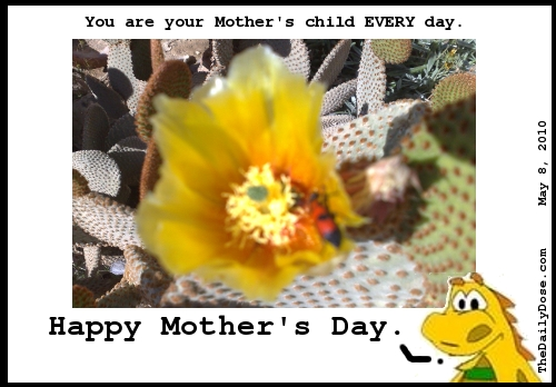 You are your mother's  child EVERY day. Happy Mother's Day. TheDailyDose.com .