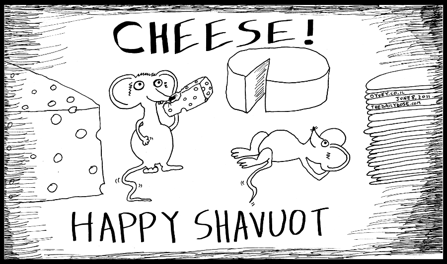 cartoon panel of mice eating cheese on the jewish holiday of shavuot  satire line drawing art ink on paper 2011 june 8 , from laughzilla for TheDailyDose.com