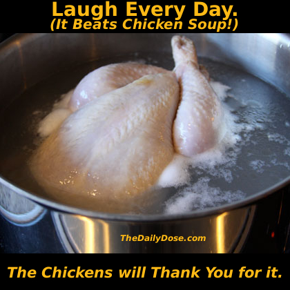 Laugh  a Little. It beats Chicken Soup. TheDailyDose.com . The Chickens will Thank You for it.