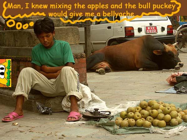 102405nepal-street-merchant-asleep