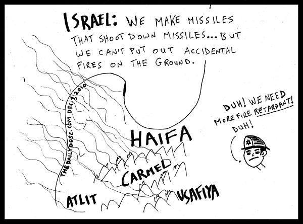 2010-december-4-israel-fire-retardants-600x445