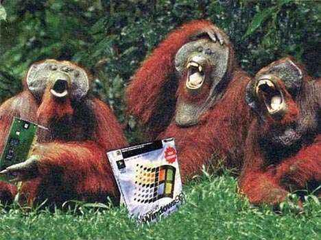 microsoft-apes