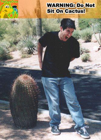 yoni-cactus-ow001